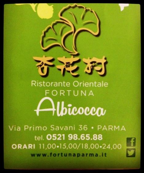 via Primo Savani Parma
