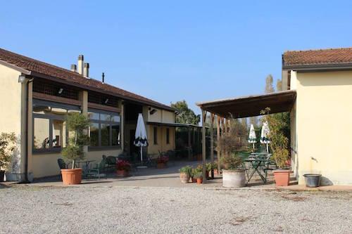 Certosino